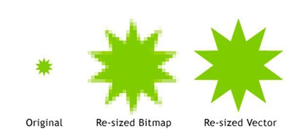 El-uso-de-gráficos-vectoriales-Staff-Creativa.